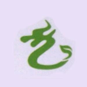 深圳龙行跆拳道培训