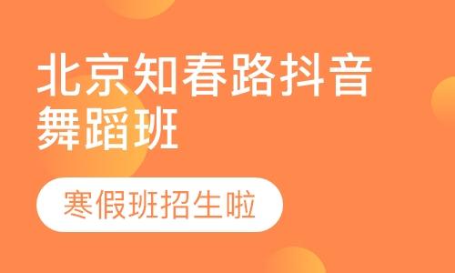 北京表演高考培训班