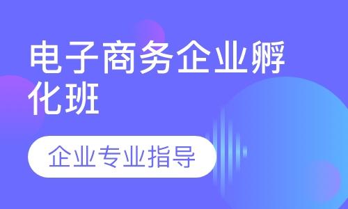广州电子商务企业孵化班