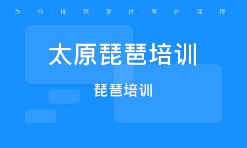 太原琵琶培训学校