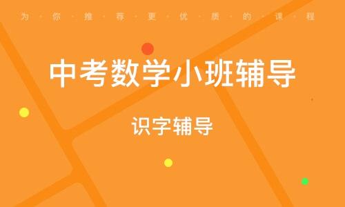 淄博中考数学小班辅导