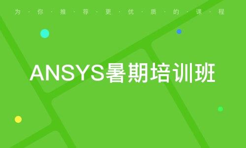 ANSYS暑期培训班