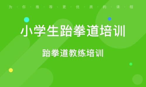 北京小学生跆拳道培训班