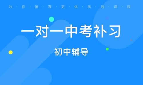 广州一对一中考补习