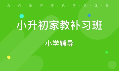 广州小升初家教补习班