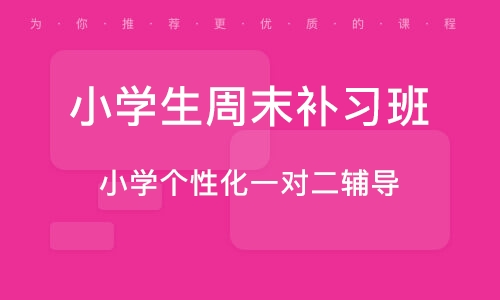 天津小学生周末补习班
