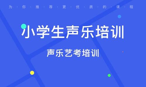 上海小学生声乐培训