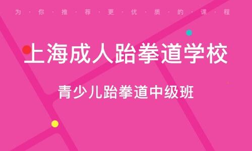 上海成人跆拳道学校