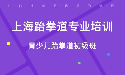 上海跆拳道专业培训