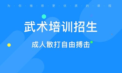 上海武术培训招生