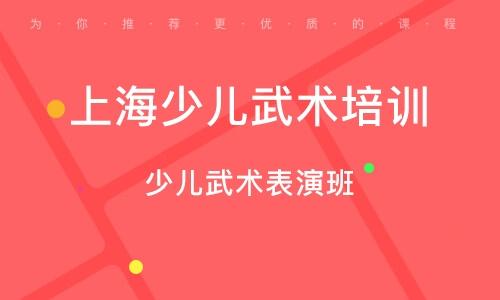 上海少儿武术培训