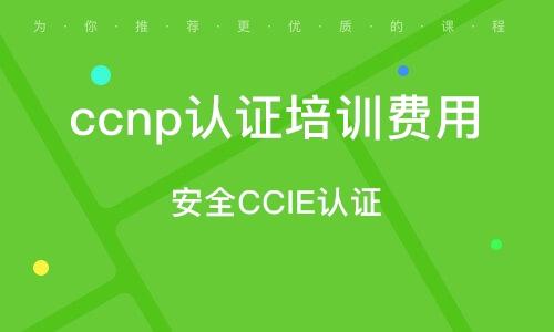 安全CCIE認證