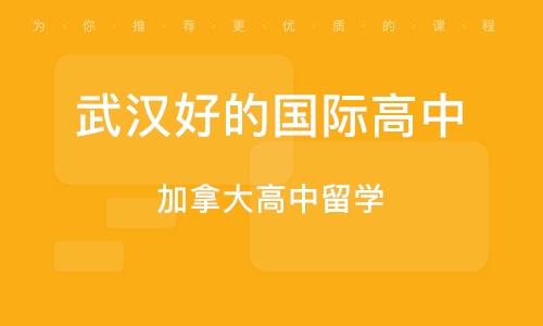 武汉好的国际高中