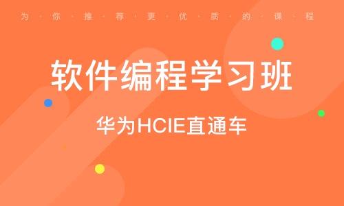 武汉软件编程学习班