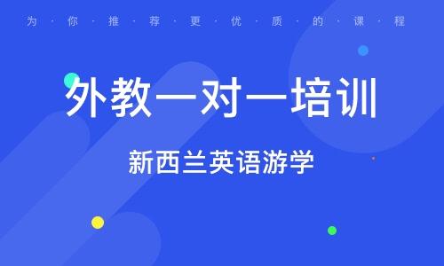 杭州外教一对一培训机构