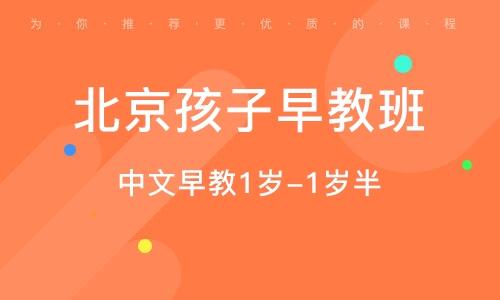 北京孩子早教班
