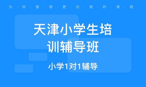 天津小学生培训辅导班