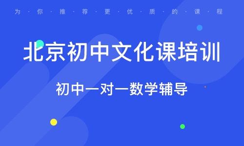 北京初中文化課培訓
