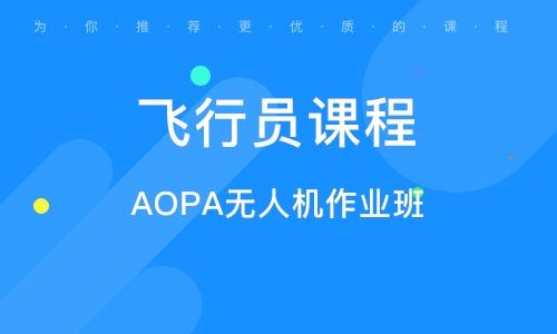 AOPA無人機作業班