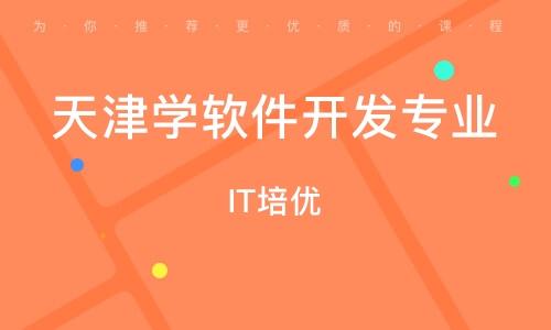 天津学软件开发专业