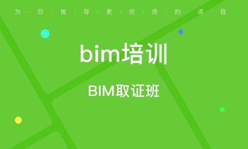 BIM取证班