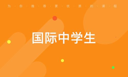 武汉国际中学生