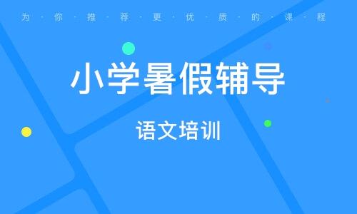 武汉小学暑假辅导