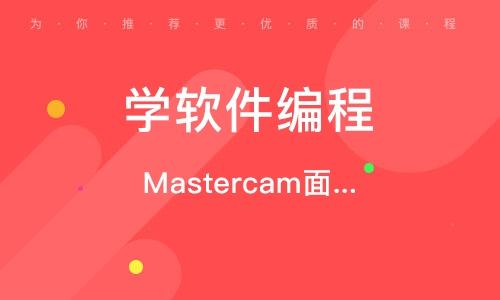 北京学软件编程