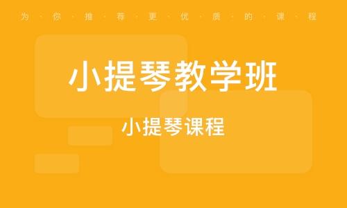 武汉小提琴教学班
