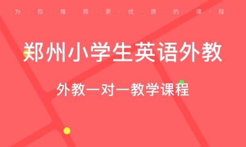 郑州小学生英语外教