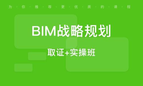BIM战略规划 (取证+实操班)