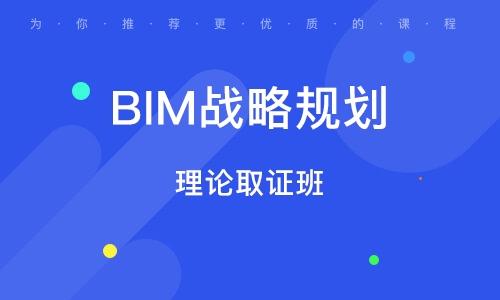 BIM战略规划 (理论取证班)