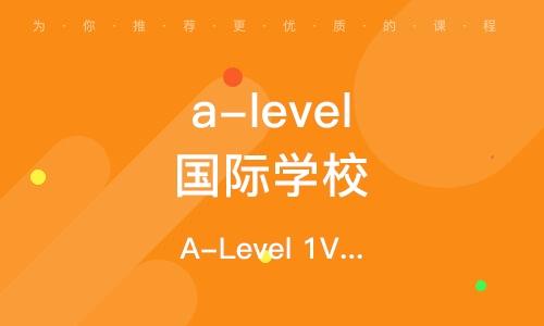 A-Level 1V1或2-4人小班 周末同步提高課程