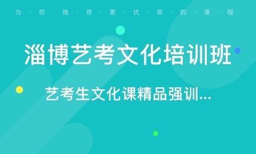 淄博艺考文化培训班