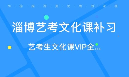 淄博艺考文化课补习