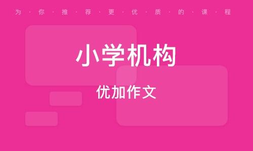郑州小学机构
