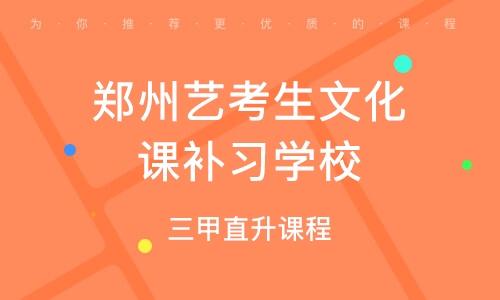 郑州艺考生文明课补习黉舍