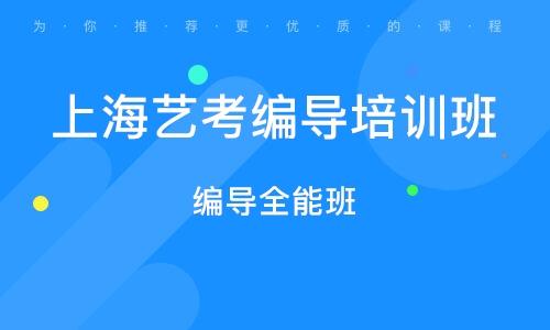 上海艺考编导培训班