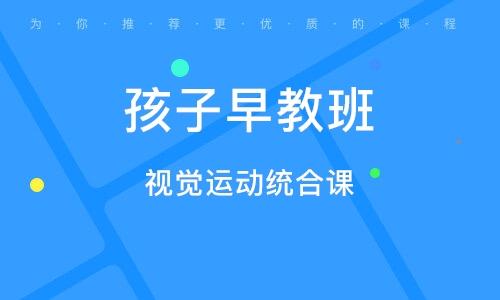 北京视觉运动统合课