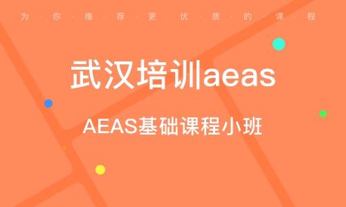 AEAS基礎課程小班