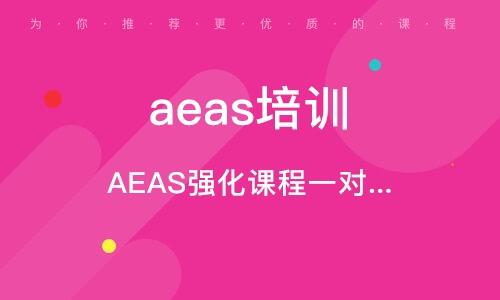 AEAS強化課程一對一