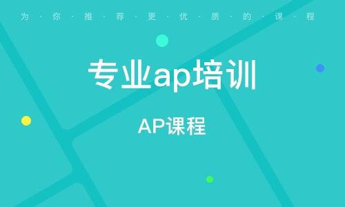 天津AP课程