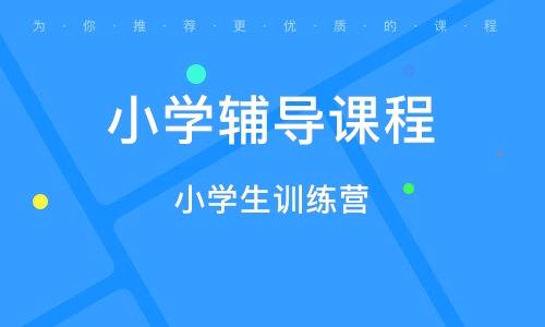 广州小学辅导课程