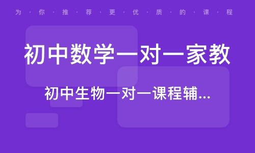 广州初中数学一对一家教
