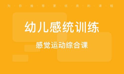 广州幼儿感统训练