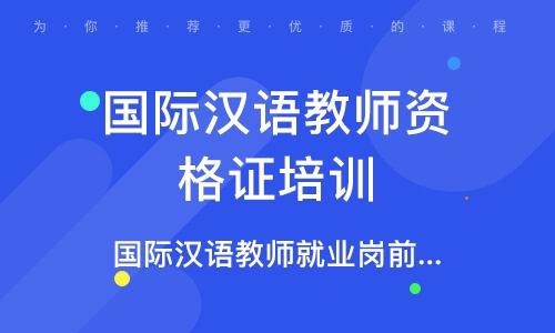 國際漢語教師就業崗前培訓(網絡)課
