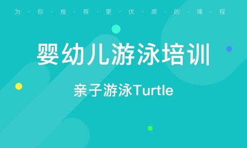 親子游泳Turtle