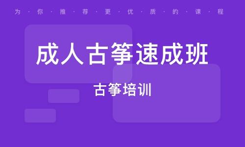 上海成人古筝速成班