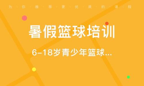 天津暑假篮球培训