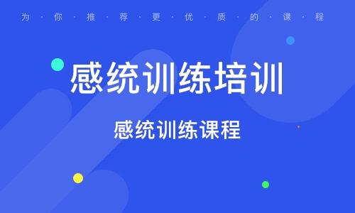 深圳感统练习培训班